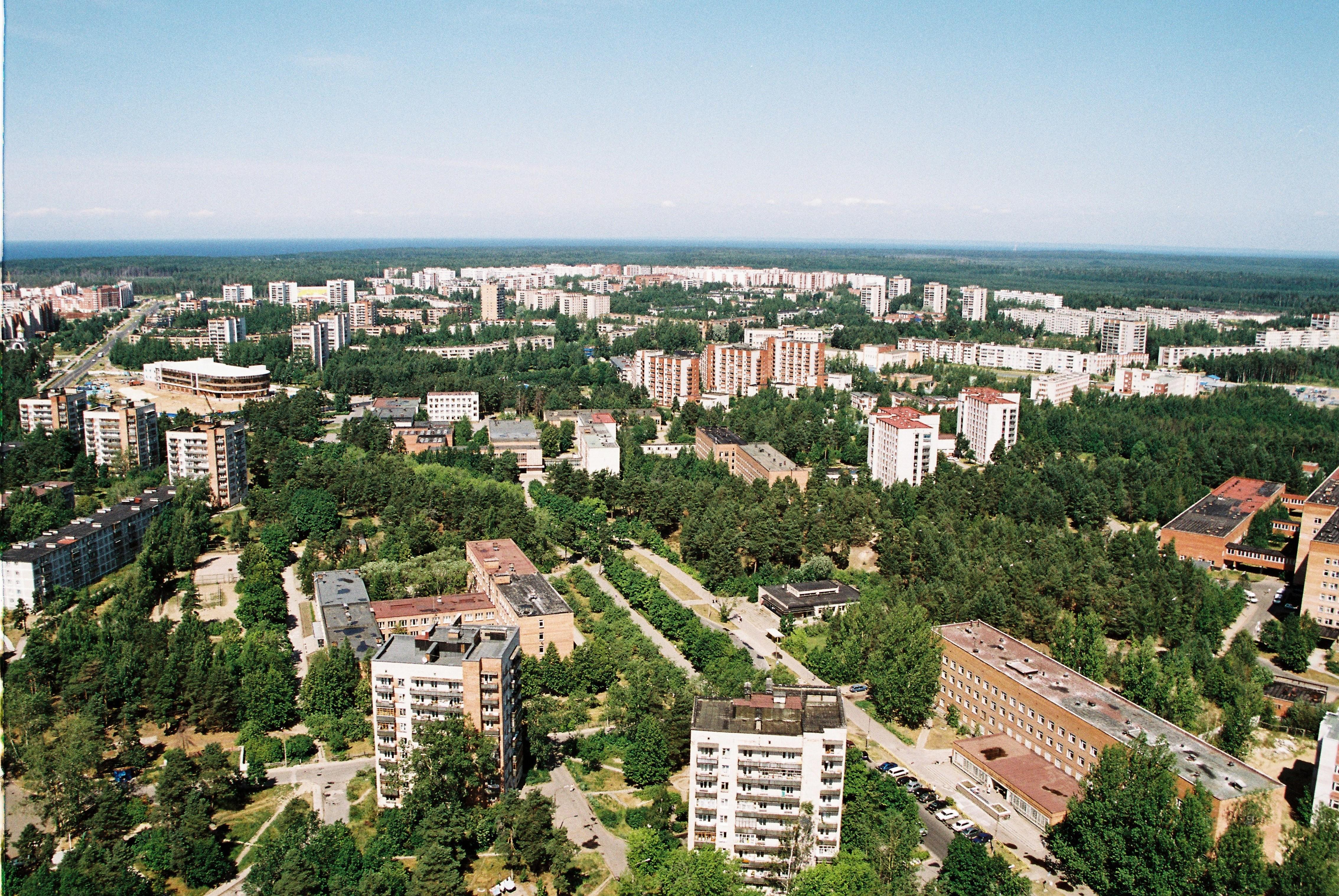 Услуги сосновый бор ленинградская обл 10 фотография